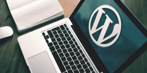 Managed WordPress Hosting Plans For Beginners